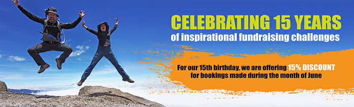 CC 15y Celebrate Banner Website