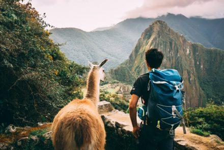 Machu Picchu with Charity Challenge, plus Llama