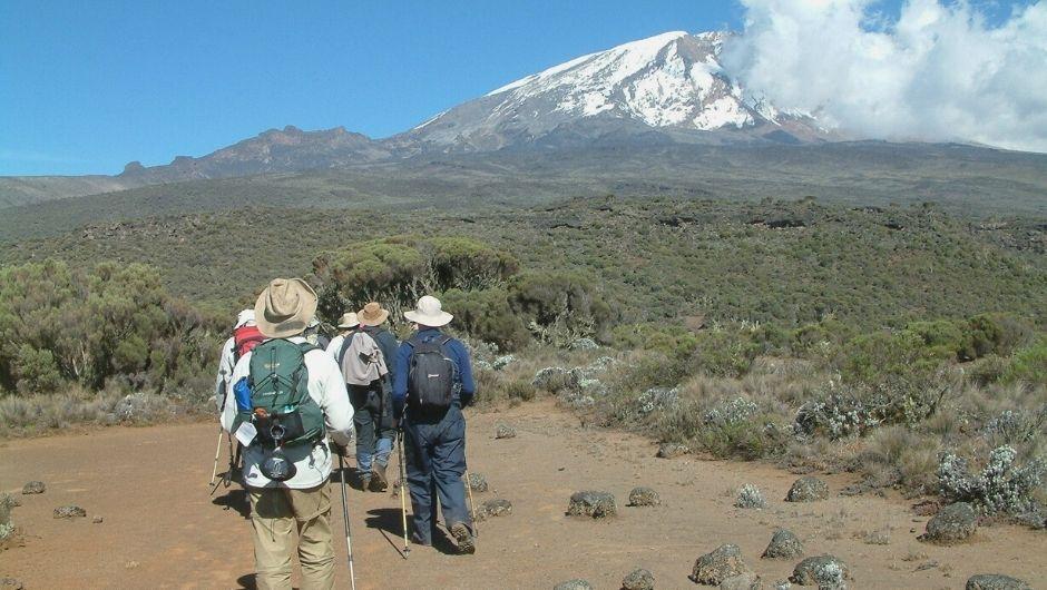 Charity Challenge - Kilimanjaro Summit Climb